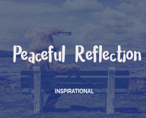 peaceful-reflection